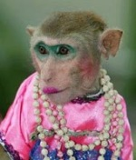 Pembelajaran Monyet